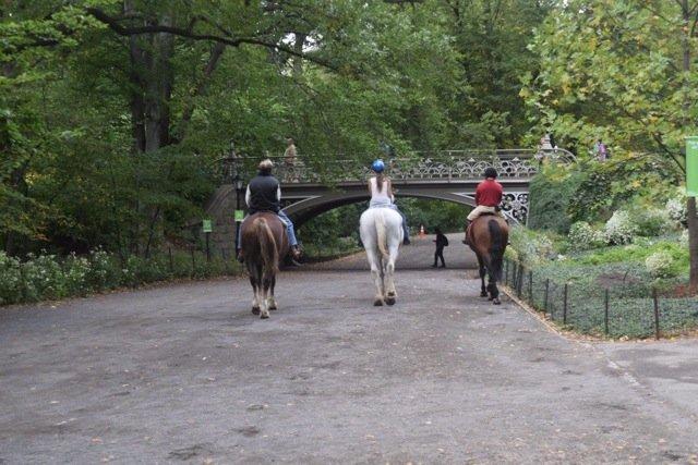 Horseback Riding, Central Park