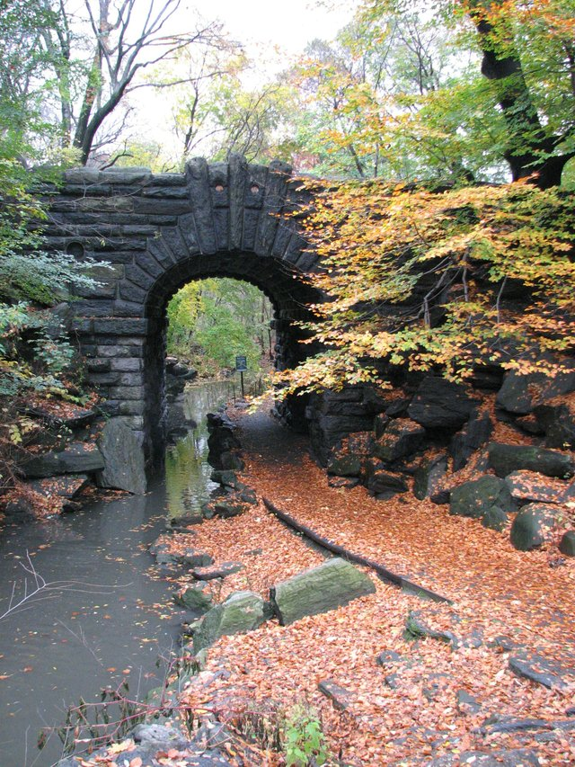 Entrance to the Ravine