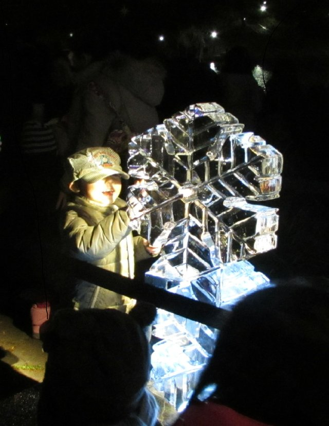 Ice Carving Admirer