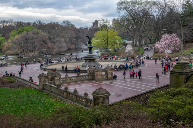 Bethesda Terrace and Fountain