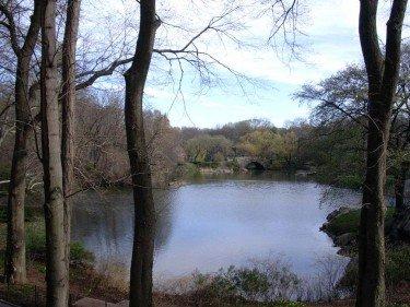 Bridge at The Pond