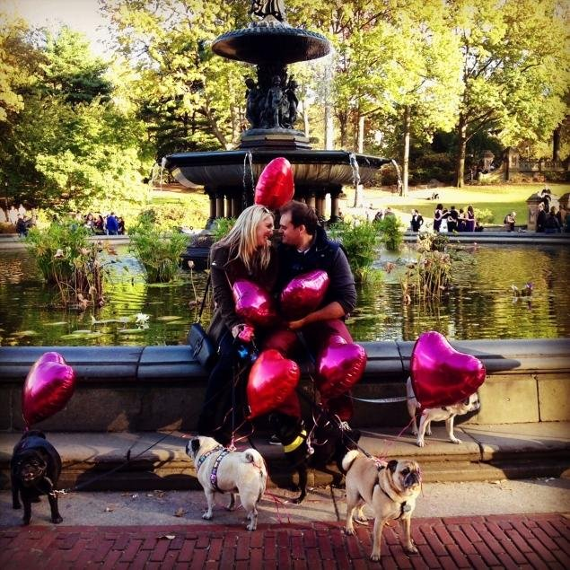 new-york-pug-proposal.jpg.jpe