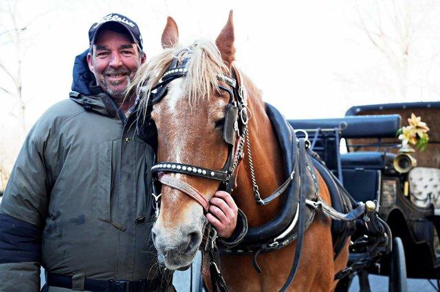 roger-carriage-horse.jpg.jpe