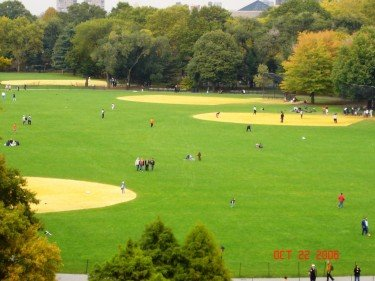 Great Lawn of Central Park