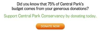 donate_conservancy
