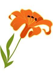 daylily.jpg.jpe