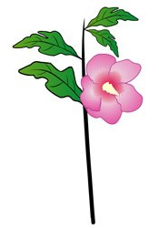 rose-of-sharon.jpg.jpe