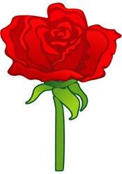 rose.jpg.jpe