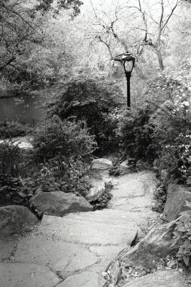 Central Park Path