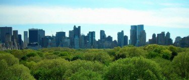 NY skyline from roof garden at the Met