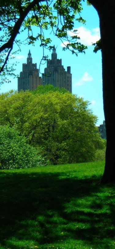 Dapple shade