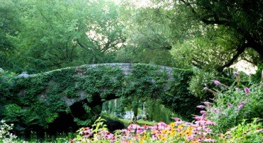 The Lush Stone Bridge