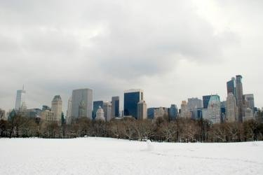 Picture Of 59th Street Skyline Taken From Central Park In New York City - February 23, 2008