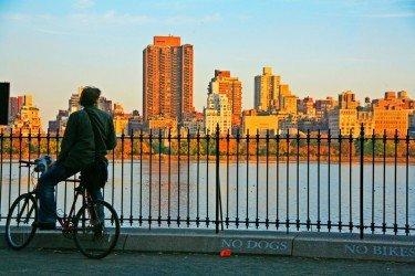 Central Park Cyclist