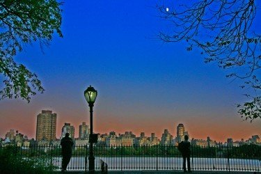 Central Park Evening