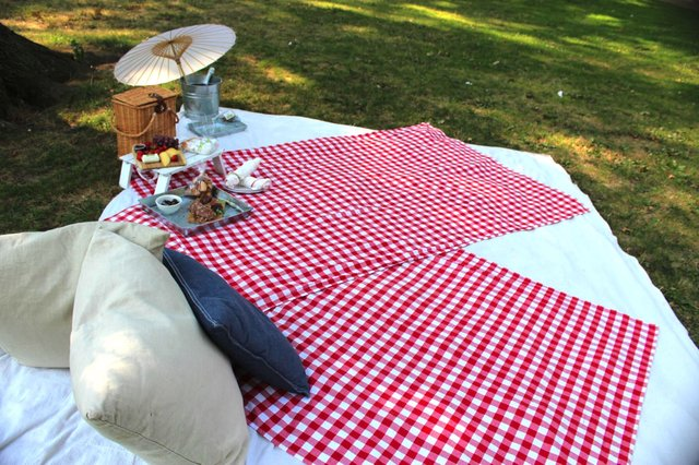 Picnic Event Blanket 2.JPG