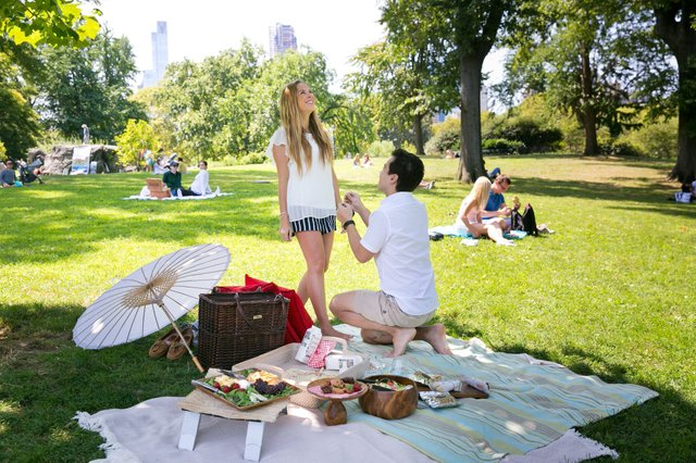 DiegoMarcia proposal picnic 2.jpg