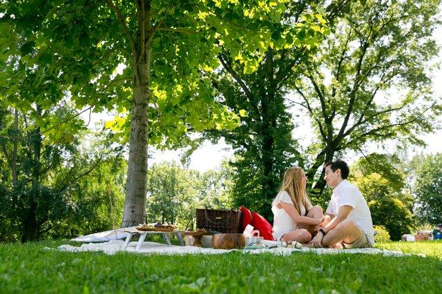 DiegoMarcia proposal picnic 3.jpg