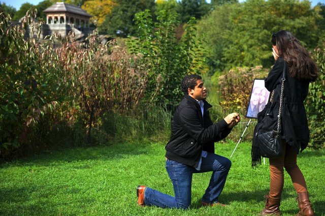 Lindsay Michael proposal.jpg