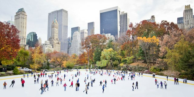 Your Complete Guide to New York City's Central Park