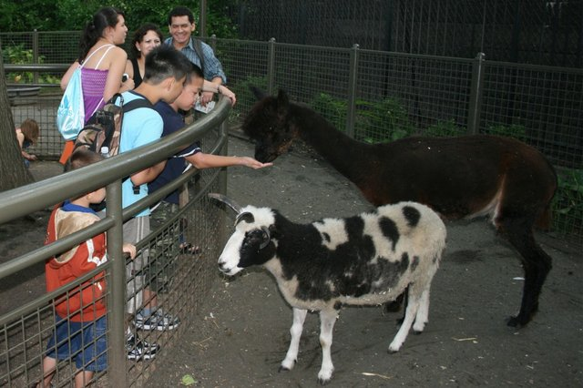 Tisch Children's Zoo