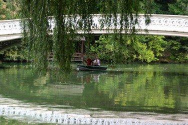 Row on The Lake