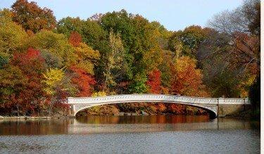 Bow Bridge in Full Color