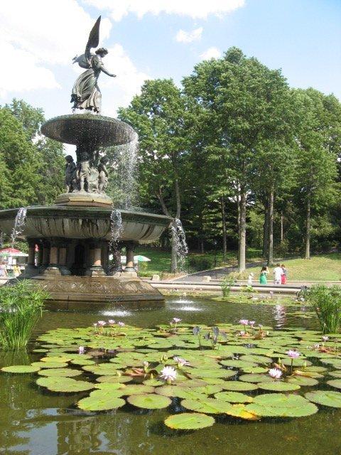 bethesda-fountain-summer