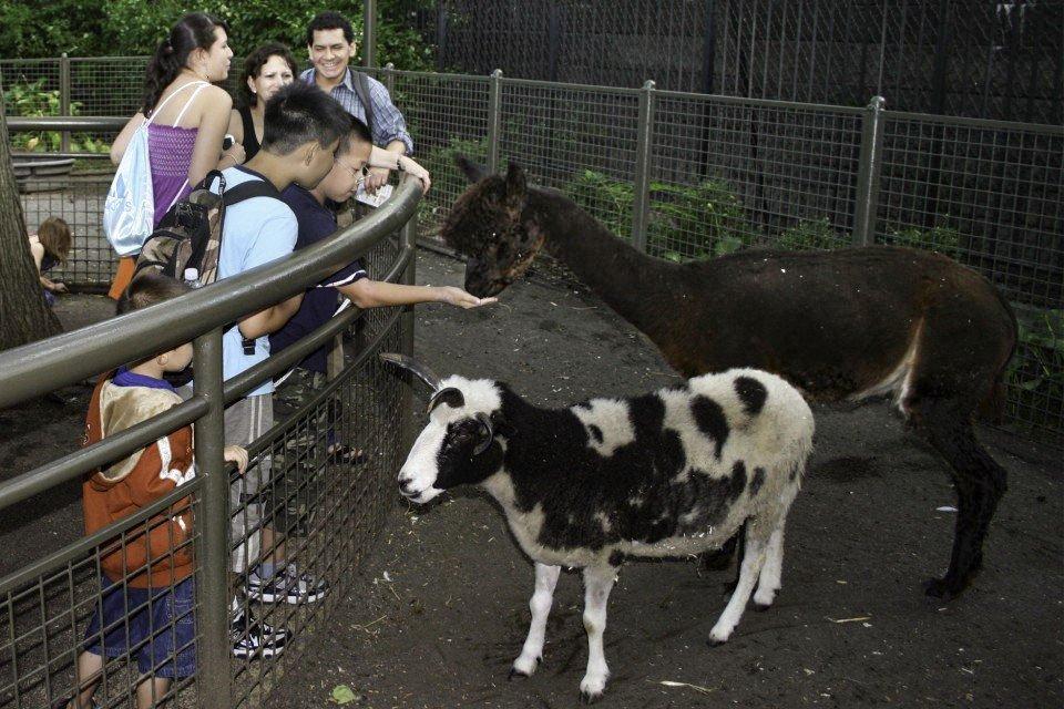 childrens_zoo.jpg