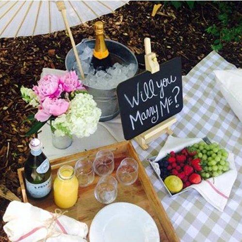 proposal-picnic.png