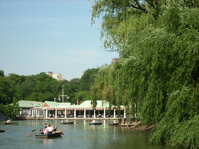 Willows in front of the Boathouse