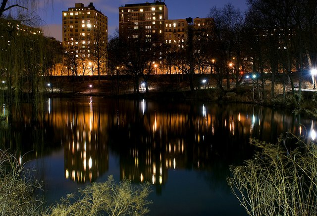 The Pool & Central park West