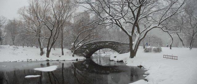 Bridge & Snow